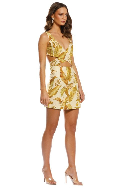 Pasduchas Hazy Cut Out Dress Mini Print